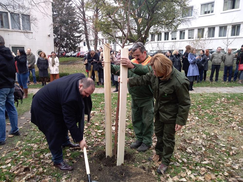 Zelena nedelja u AP Vojvodini4